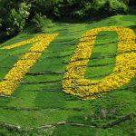 Los 10 mandamientos de la Fisioterapia Respiratoria